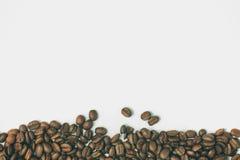 σειρά πλαισίων πλαισίων τροφίμων καφέ φασολιών Arabica Coffea Στοκ εικόνα με δικαίωμα ελεύθερης χρήσης