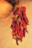 Σειρά των κόκκινων πιπεριών τσίλι Στοκ Φωτογραφία
