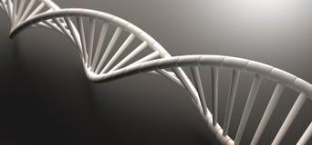 Σειρά DNA Στοκ Εικόνα
