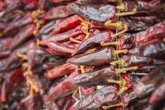 Σειρές πιπεριών Espelette Στοκ εικόνες με δικαίωμα ελεύθερης χρήσης