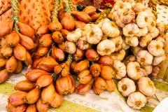 Σειρές του σκόρδου και των κρεμμυδιών Στοκ Εικόνες