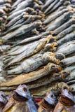 Σειρές των αποξηραμένων ψαριών Στοκ Εικόνες