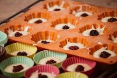 Σειρές των ζωηρόχρωμων φλυτζανιών Muffins προετοιμασία στο σπίτι Στοκ εικόνα με δικαίωμα ελεύθερης χρήσης