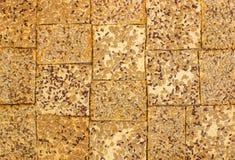Σειρές των διάφορων μπισκότων κουλουρακιών και βρωμών Στοκ εικόνες με δικαίωμα ελεύθερης χρήσης