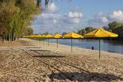 Σειρές των κίτρινων ομπρελών στην παραλία Στοκ φωτογραφίες με δικαίωμα ελεύθερης χρήσης