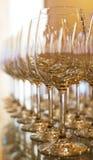 Σειρές των κενών γυαλιών κρασιού. Στοκ φωτογραφία με δικαίωμα ελεύθερης χρήσης