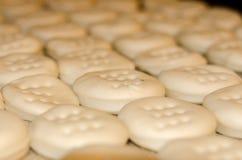 Σειρές των κτυπημένων μπισκότων έτοιμων για το ψήσιμο Στοκ Εικόνες