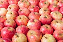 Σειρές των κόκκινων μήλων σε μια ξύλινη επιφάνεια Τοπ όψη Στοκ φωτογραφία με δικαίωμα ελεύθερης χρήσης