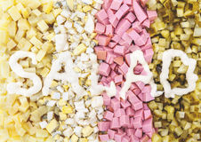 Σειρές των τεμαχισμένων συστατικών για την ετικέτα σαλάτας και μαγιονέζας Στοκ Εικόνες