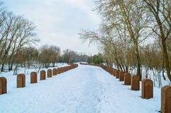 Σειρές Straignt των ταφοπέτρων το χειμώνα Στοκ Εικόνα