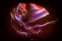 σελίδα ανώτερες ΗΠΑ φαραγγιών της Αριζόνα αντιλοπών Στοκ Φωτογραφία