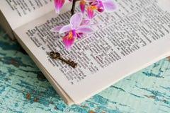 Σελίδα λεξικών με τη λέξη Στοκ Εικόνες