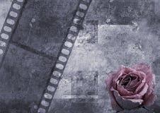 σελίδα s λευκωμάτων Στοκ φωτογραφίες με δικαίωμα ελεύθερης χρήσης