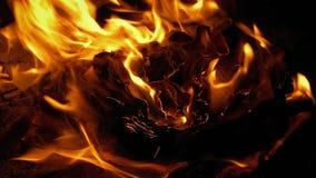 Σελίδες βιβλίων που κατσαρώνουν και που καίνε στην πυρκαγιά φιλμ μικρού μήκους