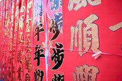Σεληνιακή νέα διακόσμηση έτους της Κίνας Στοκ Φωτογραφία