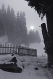 σεληνόφωτο τοπίων Στοκ Εικόνα