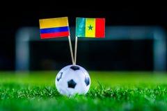 Σενεγάλη - Κολούμπια, ομάδα Χ, Πέμπτη, 28 Ποδόσφαιρο Ιουνίου, Παγκόσμιο Κύπελλο, Ρωσία 2018, εθνικές σημαίες στην πράσινη χλόη, ά στοκ εικόνες