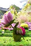 ΣΕΟΥΛ ΝΟΤΙΑ ΚΟΡΕΑ - 22 ΟΚΤΩΒΡΊΟΥ 2017: Φεστιβάλ χρυσάνθεμων στο ναό jogyesa στη Σεούλ, Νότια Κορέα Στοκ Φωτογραφίες