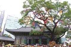 ΣΕΟΥΛ ΝΟΤΙΑ ΚΟΡΕΑ - 22 ΟΚΤΩΒΡΊΟΥ 2017: Φεστιβάλ χρυσάνθεμων στο ναό jogyesa στη Σεούλ, Νότια Κορέα Στοκ εικόνες με δικαίωμα ελεύθερης χρήσης