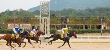 Σεούλ, Κορέα - 1 Σεπτεμβρίου 2016: Τα άλογα και jockeys περνούν τη γραμμή τερματισμού Ο ιππόδρομος τρέξτε το πάρκο κοντά στη Σεού Στοκ Φωτογραφίες