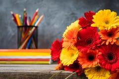 1 Σεπτεμβρίου κάρτα έννοιας, ημέρα δασκάλων `, πίσω στο σχολείο ή το κολλέγιο, προμήθειες, μια δέσμη του gerbera Στοκ Εικόνες