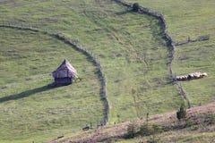 Σερβικά παραδοσιακά ξύλινα σπίτι και κοπάδι των προβάτων στοκ φωτογραφία με δικαίωμα ελεύθερης χρήσης