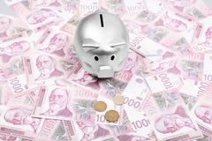 Σερβικά χρήματα μετρητών Δηναρίων και ασημένια piggy τράπεζα στον πίνακα στοκ εικόνα με δικαίωμα ελεύθερης χρήσης