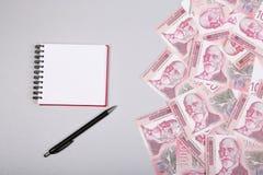 Σερβικά χρήματα, σημειωματάριο και μάνδρα μετρητών Δηναρίων, στον πίνακα στοκ φωτογραφία με δικαίωμα ελεύθερης χρήσης