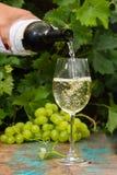 Σερβιτόρος που χύνει ένα γυαλί του πάγου - κρύο άσπρο κρασί, υπαίθριο πεζούλι, Στοκ Φωτογραφίες