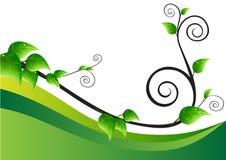 σερνμένος editable διάνυσμα φυτών απεικόνισης Στοκ εικόνα με δικαίωμα ελεύθερης χρήσης