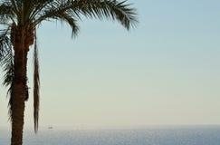 Σεϊχης Sharm EL Ερυθρών Θαλασσών στοκ εικόνες