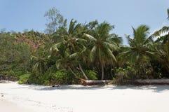 Σεϋχέλλες Όμορφη παραλία Anse Volbert Στοκ Εικόνα