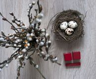 Σε έναν ξύλινο πίνακα βρίσκεται μια φωλιά με τα αυγά και στέκεται ένα βάζο με τους κύβους Απρίλιος ημερολογιακού Πάσχας κλάδων ιτ Στοκ Εικόνες