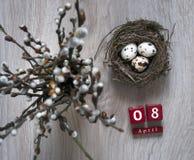 Σε έναν ξύλινο πίνακα βρίσκεται μια φωλιά με τα αυγά και στέκεται ένα βάζο με τους κύβους Απρίλιος ημερολογιακού Πάσχας κλάδων ιτ Στοκ φωτογραφία με δικαίωμα ελεύθερης χρήσης