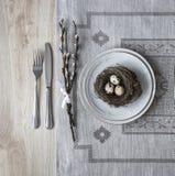 Σε έναν πίνακα μια πετσέτα με ένα πιάτο ένα μαχαίρι δικράνων μια φωλιά με ένα αυγό ενός κλαδίσκου ιτιών Στοκ Εικόνες
