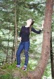 Σε ένα κρεμώντας δέντρο Στοκ Εικόνα