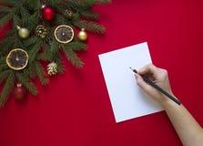 Σε ένα κόκκινο υπόβαθρο ένας πράσινος κλάδος έλατου που διακοσμείται με το μελόψωμο Χριστουγέννων, τους χρυσούς κώνους, τα πορτοκ Στοκ εικόνες με δικαίωμα ελεύθερης χρήσης