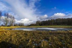 Σε ένα λιβάδι με μια μισό-παγωμένη λίμνη 1 Στοκ Εικόνες