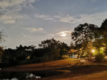 Σε ένα πάρκο στοκ εικόνα