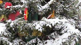 Σε ένα χιονισμένο δέντρο ενός παιχνιδιού απόθεμα βίντεο