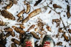Σε ένα χιονώδες δάσος βουνών, κινηματογράφηση σε πρώτο πλάνο των μποτών με τις κόκκινες δαντέλλες επάνω Στοκ Εικόνα