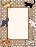 Σελίδα γατακιών Στοκ Φωτογραφία