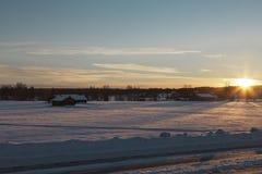 Σε αναζήτηση του ήλιου Στοκ εικόνα με δικαίωμα ελεύθερης χρήσης