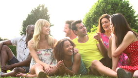Σε αργή κίνηση ακολουθία φίλων που κάθονται στη χλόη από κοινού απόθεμα βίντεο