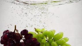 Σε αργή κίνηση βίντεο των κόκκινων και πράσινων σταφυλιών Οι δέσμες των σταφυλιών βυθίζονται στο νερό με τις φυσαλίδες φιλμ μικρού μήκους
