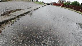 Σε αργή κίνηση βίντεο των πτώσεων βροχής που χτυπούν το δρόμο απόθεμα βίντεο