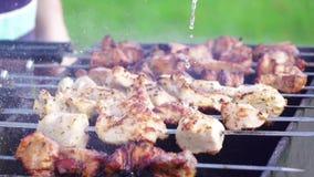 Σε αργή κίνηση βόειο κρέας χοιρινού κρέατος febabs για το θερινό χρόνο σχαρών στη φύση απόθεμα βίντεο