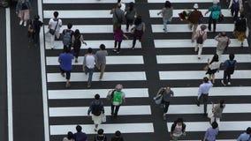 Σε αργή κίνηση εναέρια άποψη, πλήθος των ανθρώπων που περπατούν στο σταθμό Marunouchi του Τόκιο απόθεμα βίντεο