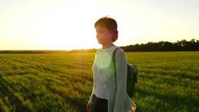 Σε αργή κίνηση ενός κοριτσιού που περπατά κατά μήκος ενός πράσινου χορτοτάπητα σε ένα κλίμα ηλιοβασιλέματος απόθεμα βίντεο
