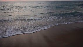 Σε αργή κίνηση ζωγράφος που εξετάζει το θαλάσσιο ορίζοντα βραδιού απόθεμα βίντεο